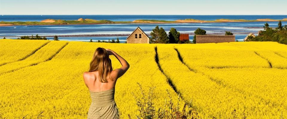 Prince Edward Island / I'Île-du-Prince-Édouard